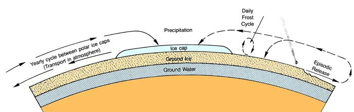 The martian hydrologic system