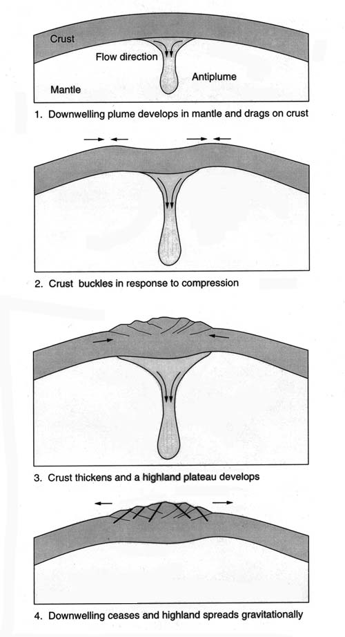 downwelling plumes